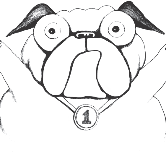 coloring sheet pig the pug